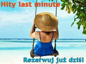 http://www.traveligo.pl/last-minute